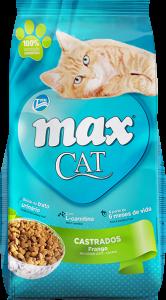 Max Cat Neutered