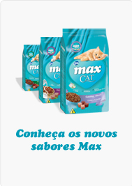 Conheça os Novos Sabores Max