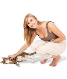 Dicas e cuidados com o seu gato