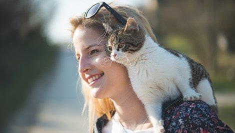 Damos 5 motivos para te convencer que ser mãe de gatinho é a melhor coisa do mundo!