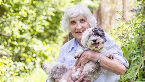 cachorro e idosa