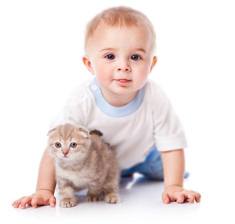 gato e crianças