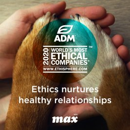 What are the most ethical companies in the world?