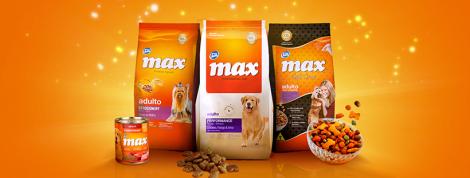 Cantidad ideal de alimento para perros