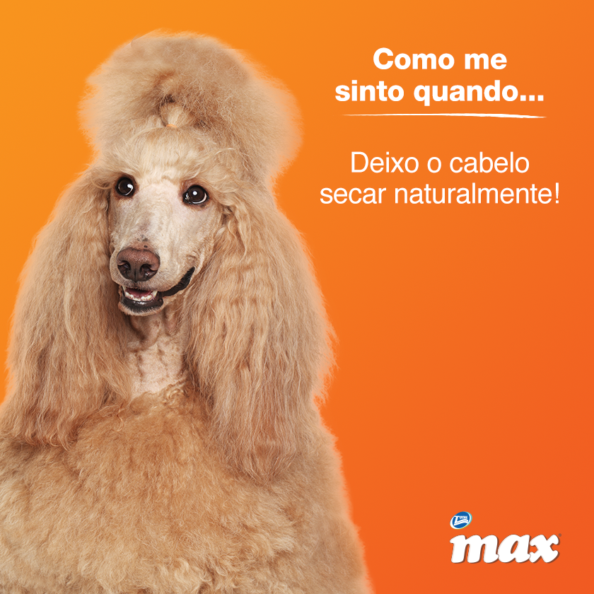 Max Total Alimentos